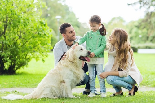 Babies & Pets: Tips for the Transition